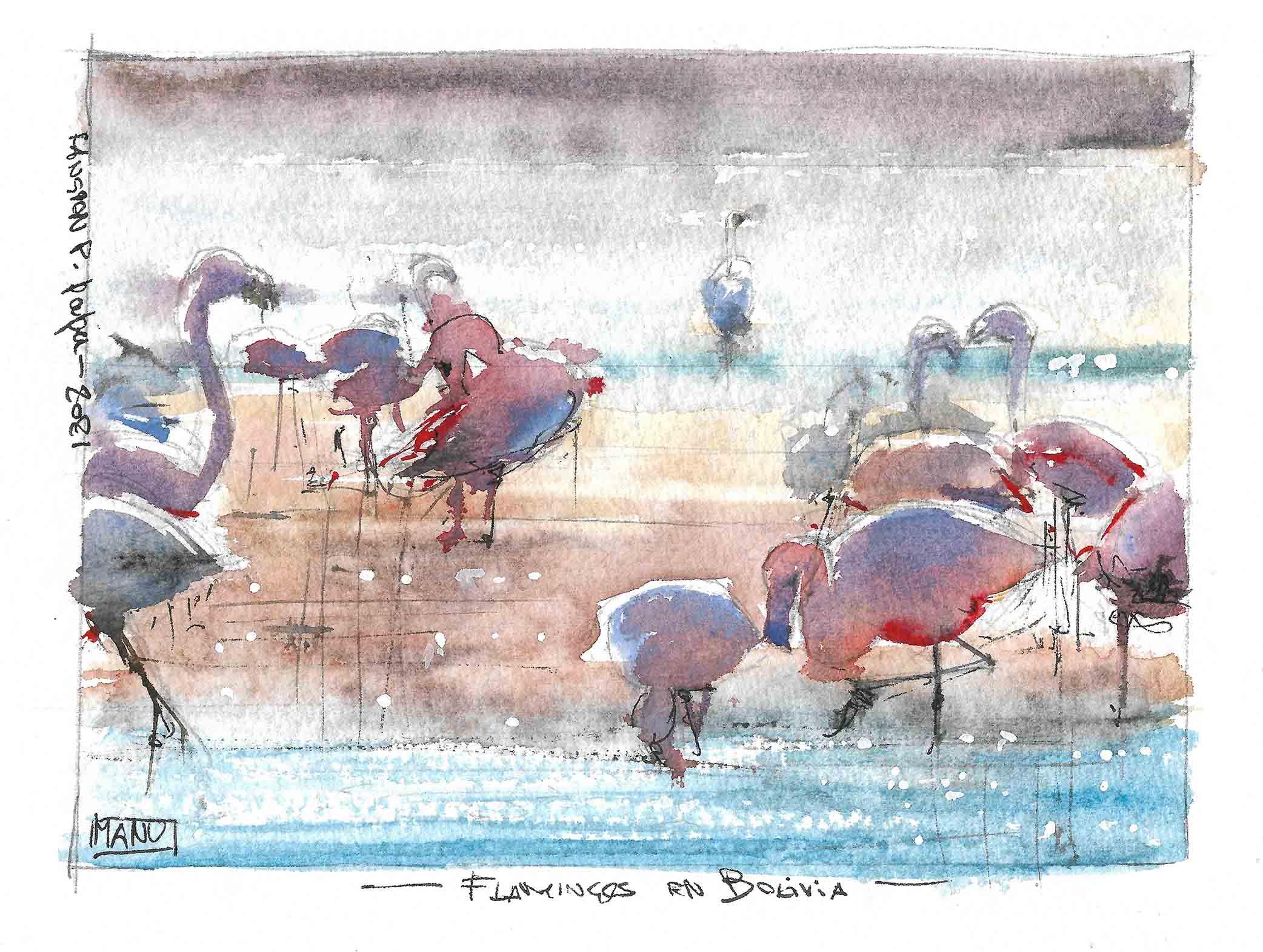 Flamingos Aquarelle Watercolour Emmanuele Cammarano fine artist